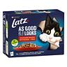 Latz Agail Countryside 12x85g lajitelma hyytelössä 4 varianttia kissanruoka